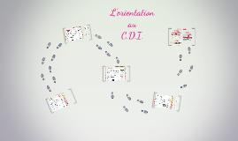 CDI, Esidoc et Orientation