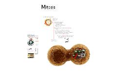 Mitosis,apoptosis y ciclo celular