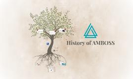 History of AMBOSS