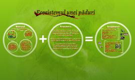 Copy of Ecosistemul unei păduri