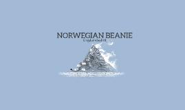 Copy of NORWEGIAN BEANIE