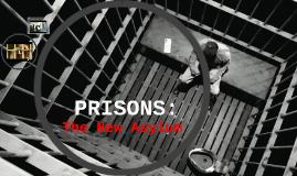 Prisons: The New Asylum