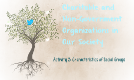 Charitable and Non-Goverment Organizations in Our Society