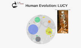 Human Evolution: Lucy
