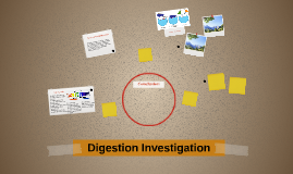 Digestion Investigation