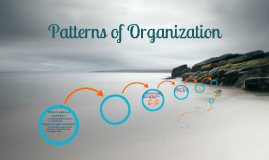 Copy of Patterns of Organization