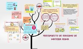 Copy of PRESUPUESTO DE CONSUMO DE MATERIA PRIMA
