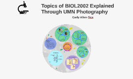 Topics of BIOL2002 Explained by UMN