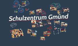"""Schulzentrum Gmünd - """"Wirtschaft PUR"""""""