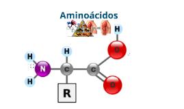 Copy of Aminoacidos y Proteinas