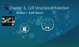 4.1 Introduction to Cells