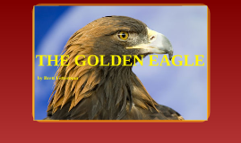 Copy of THE GOLDEN EAGLE