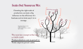 Scale And Resourses Mix