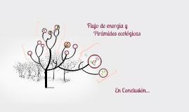Flujo de energía y
