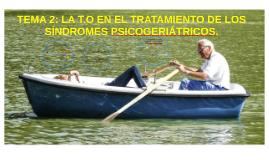 TEMA 2: LA TO EN EL TRATAMIENTO DE LOS SINDROMES PSICOGERIÁTRICOS