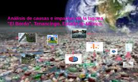 """Copy of Análisis de causas e impactos de la laguna """"El Bordo"""", Tenan"""