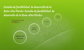 Estudio de factibilidad  de desarrollo de la Ruta «Oro Verde