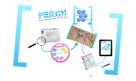Copy of PERCH Program Overview