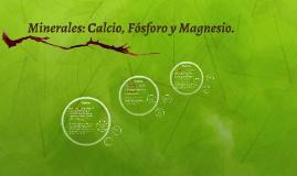 Minerales: Calcio, Fósforo y Magnesio.