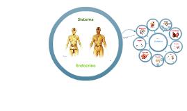 Copy of Copy of Sistema Endocrino