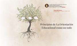 Principios de La Orientación Educacional