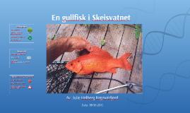 En gullfisk i Skesvantnet