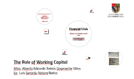 The Rol of the Working Capital