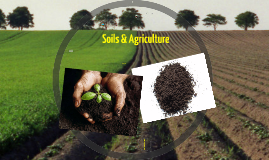 Soils and Agriculture