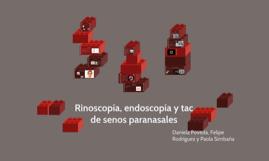 Rinoscopía, endoscopía y tac de senos paranasales