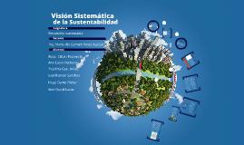 Visión Sistematica