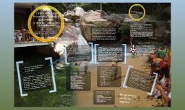 Licenciatura en Desarrollo Turístico Sustentable