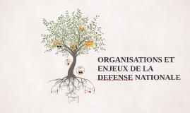 ORGANISATION ET ENJEUX DE LA DEFENSE NATIONALE