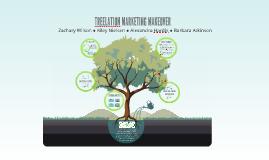 Treelation Marketing Makeover