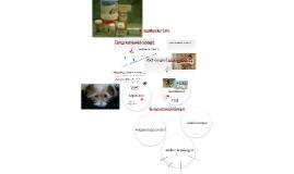Copy of Apotheekbeheer, diergeneesmiddelenwet