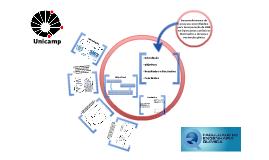Desenvolvimento de Processo Microfluídico para Incorporação de DNA em Lipossomas Catiônicos Destinados à Terapia e Vacinação Gênica