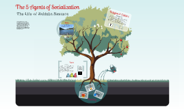 The 5 Agents of Socialization