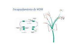 Encapsulamiento de WDM