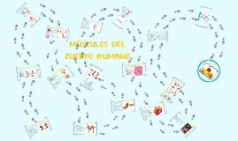 Copy of MUSCULOS DEL CUERPO HUMANO