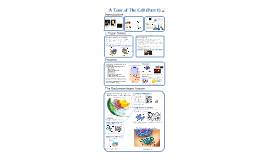 AP Bio- Matter 2: Tour of the Cell