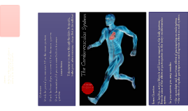 Copy of Cardiovascular System - GCSE PE Edexcel Wes