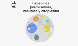 Lisosomas, peroxisomas, vacuolas y citoplasma