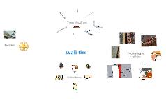 Copy of wall ties