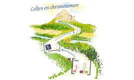 cellen en chromosomen