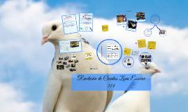 Rendición de Cuentas Zona Escolar  114