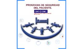 PROGRAMA DE SEGURIDAD DEL PACIENTE.