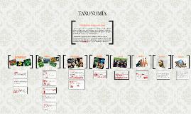 Copy of TAXONOMIA