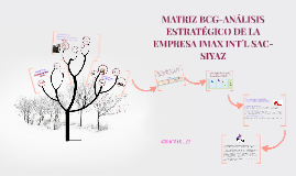 MATRIZ BCG-ANALISIS ESTRATEGICO DE LA EMPRESA IMAX INT´L SAC