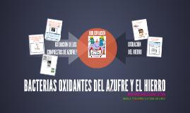 Copy of BACTERIAS OXIDANTES DEL AZUFRE Y EL HIERRO