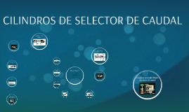 CILINDROS DE SELECTOR DE CAUDAL