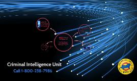Criminal Intelligence Unit